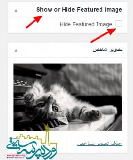 پنهان کردن تصویر شاخص در وردپرس