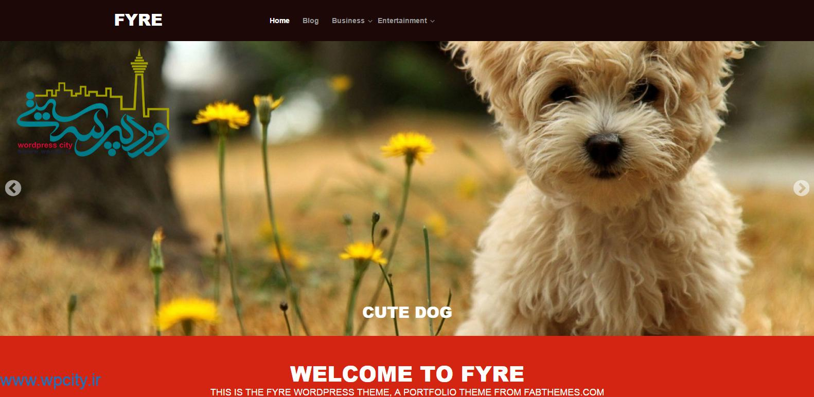 قالب شرکتی Fyre